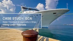 viking ECA case study
